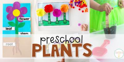 Preschool: Plants