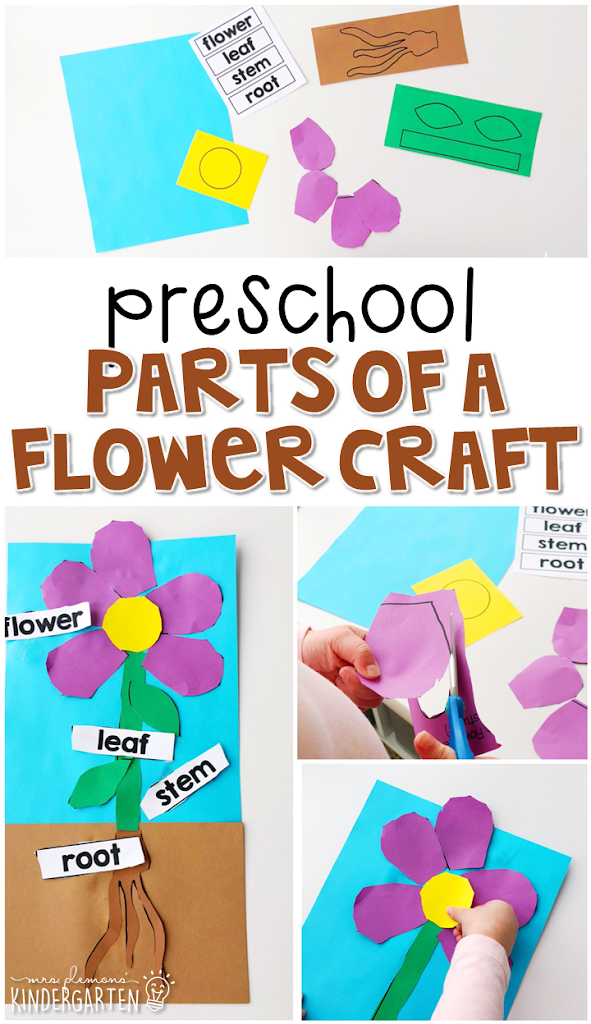 Parts of a Flower Craft:
