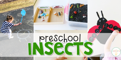 Preschool: Insects