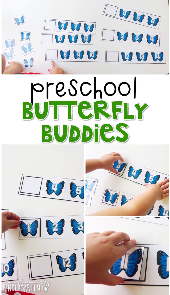 Preschool: Rainforest - Mrs. Plemons\' Kindergarten