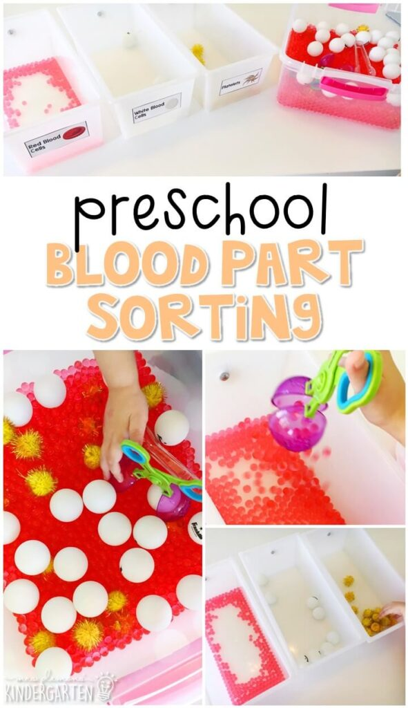 This blood part sorting activity is a fun way to practice sorting by color with a human body theme. Great for tot school, preschool, or even kindergarten!