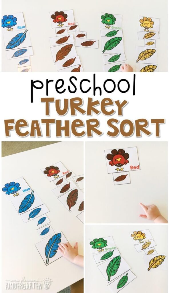 Practice sorting by 2 attributes with these turkey feathers. Sort by color and then sort again by size. Perfect for a Thanksgiving theme in tot school, preschool, or even kindergarten!