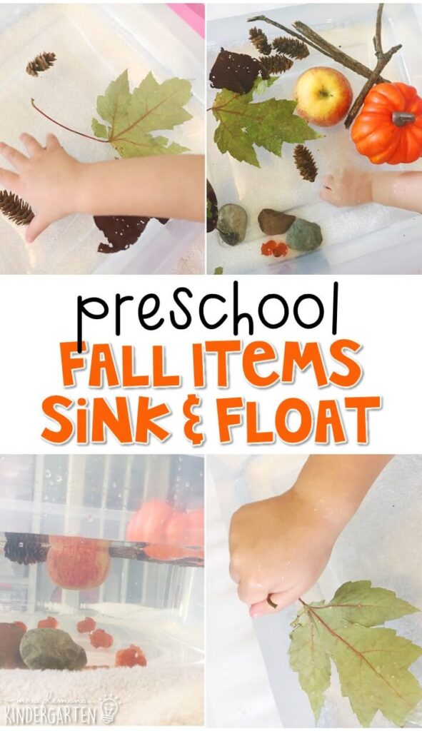 This fall sink and float activity is a fun and engaging way to incorporate lots of fine motor skills practice and science learning into a fall theme. Great for tot school, preschool, or even kindergarten!