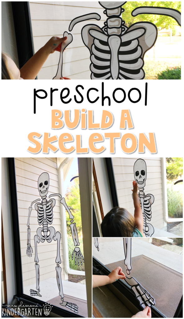 This build your skeleton activity is a great way to reinforce science vocabulary. Great for tot school, preschool, or even kindergarten!