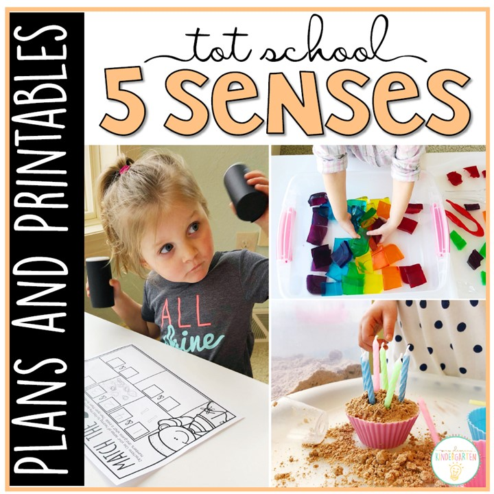 Tons of five senses themed activities and ideas. Weekly plan includes books, literacy, math, science, art, sensory bins, and more! Perfect for tot school, preschool, or kindergarten.