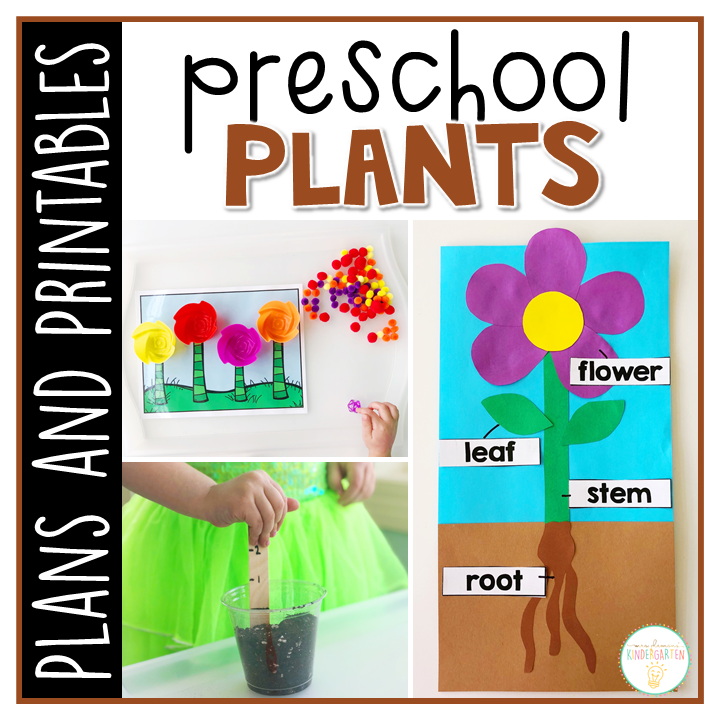 Tons of plant themed activities and ideas. Weekly plan includes books, literacy, math, science, art, sensory bins, and more! Perfect for spring in tot school, preschool, or kindergarten.