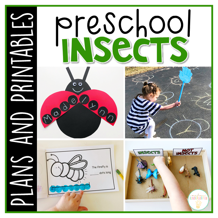 Tons of insect themed activities and ideas. Weekly plan includes books, literacy, math, science, art, sensory bins, and more! Perfect for spring in tot school, preschool, or kindergarten.