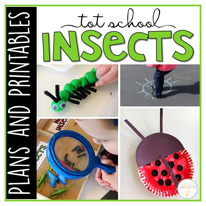 Tons of insect themed activities and ideas. Weekly plan includes books, literacy, math, science, art, sensory bins, and more! Perfect for winter in tot school, preschool, or kindergarten.