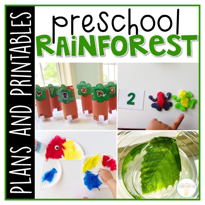 Tons of rainforest themed activities and ideas. Weekly plan includes books, literacy, math, science, art, sensory bins, and more! Perfect for tot school, preschool, or kindergarten.
