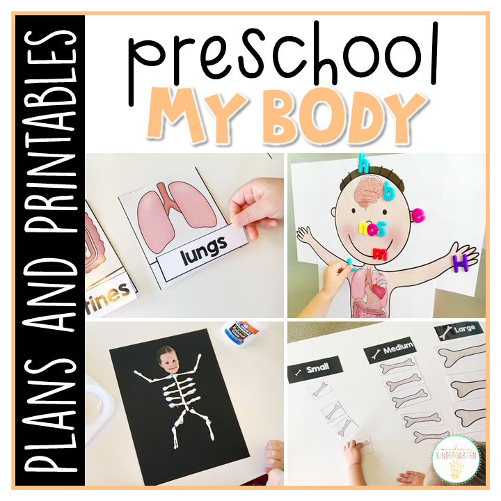 Tons of human body themed activities and ideas. Weekly plan includes read alouds with comprehension activities, literacy practice, math skills, sensory bins, science and art! Perfect for health and science in tot school, preschool, or kindergarten.