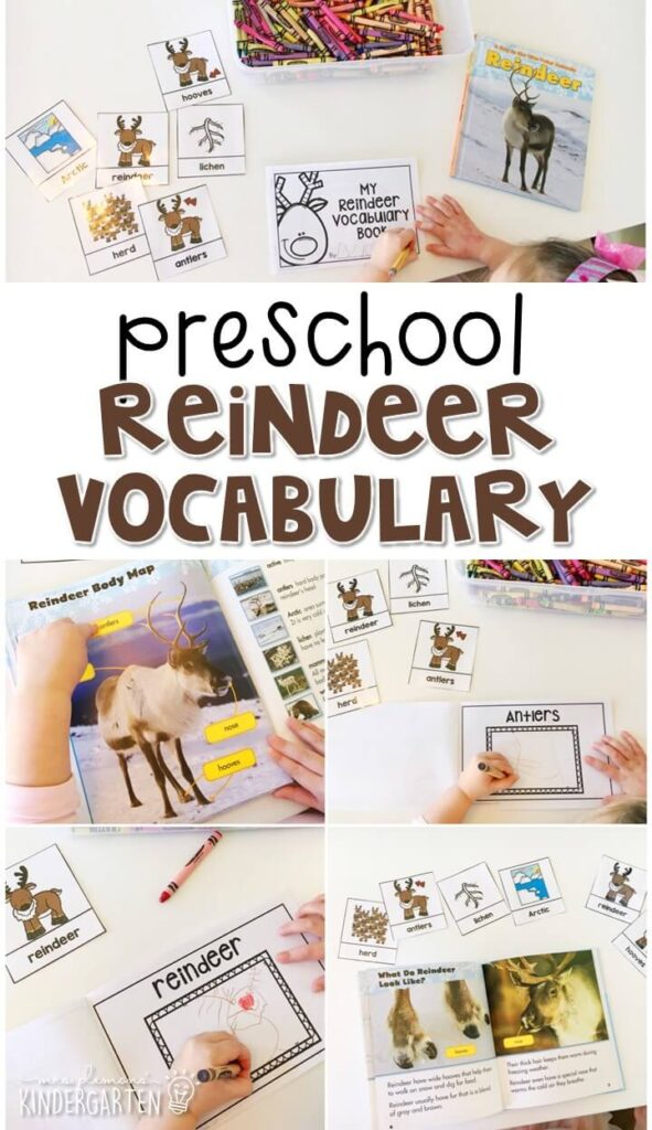 Practice reindeer vocabulary with this word matching activity with reindeer vocabulary book. Great for tot school, preschool, or even kindergarten!