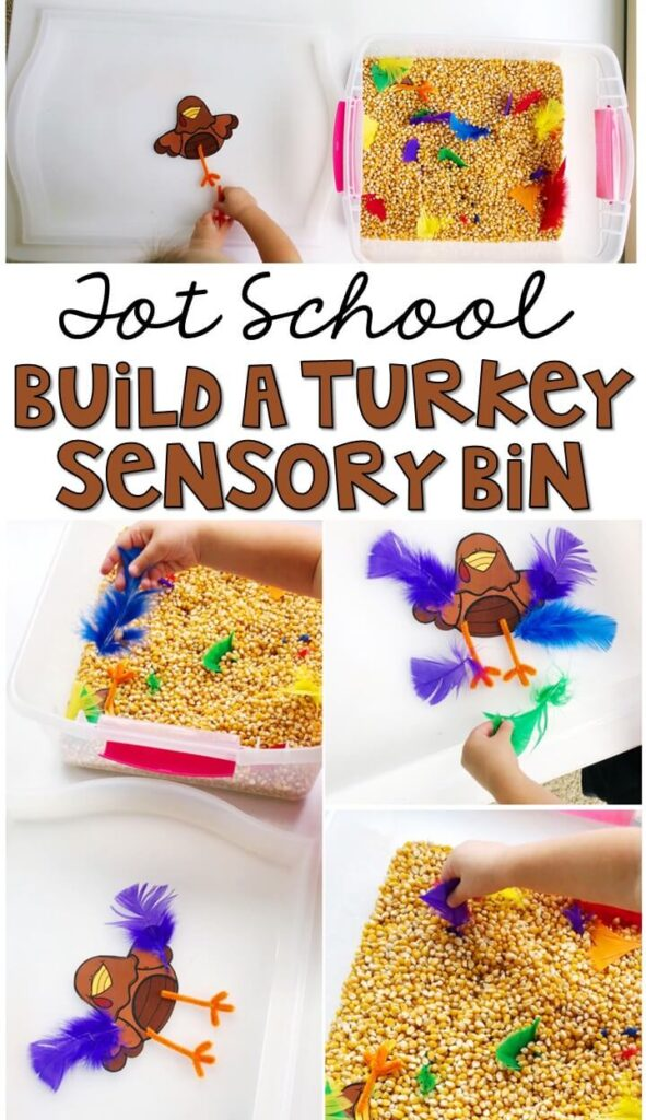 We LOVE this build a turkey sensory bin. So fun to play and explore! Great for Thanksgiving in tot school, preschool, or even kindergarten!