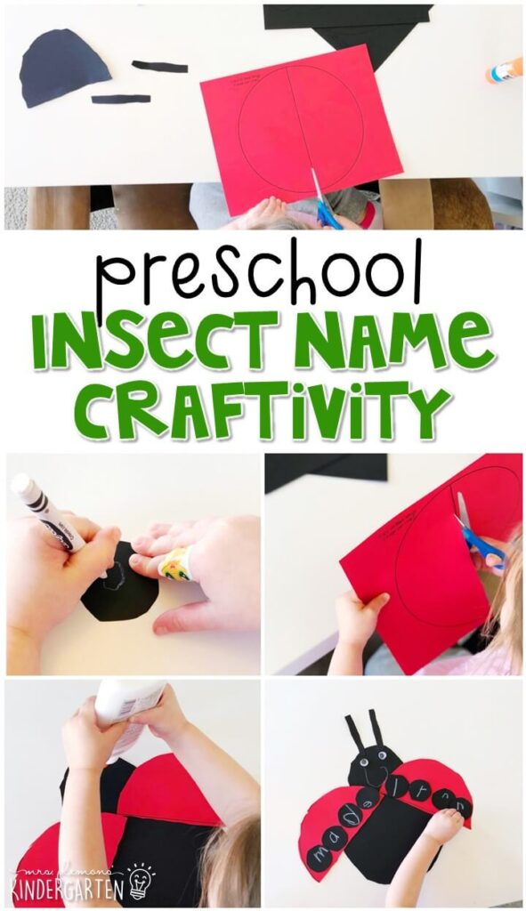 This insect name craftivity is fun for name writing, recognition, and fine motor practice with an insect theme. Great for tot school, preschool, or even kindergarten!