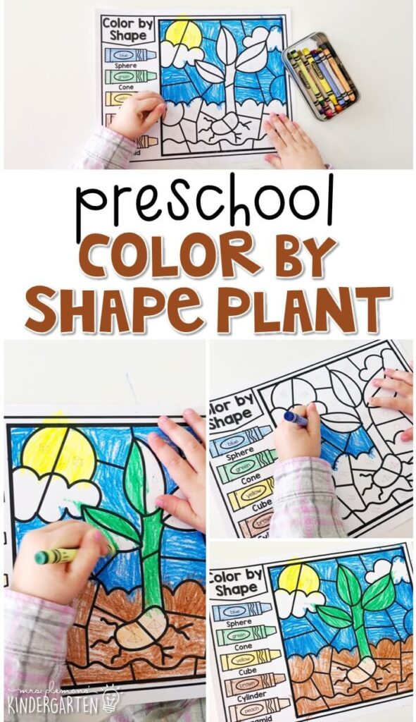 This color by shape plant activity is a fun way to work on shape identification and fine motor practice with a plant theme. Great for tot school, preschool, or even kindergarten!