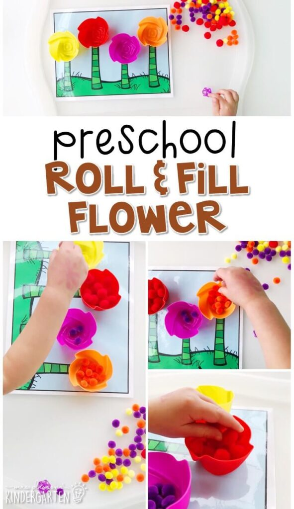 This roll and fill flower activity is a great way to practice identifying numbers and counting out sets of objects. Great for a plant theme in tot school, preschool, or even kindergarten!