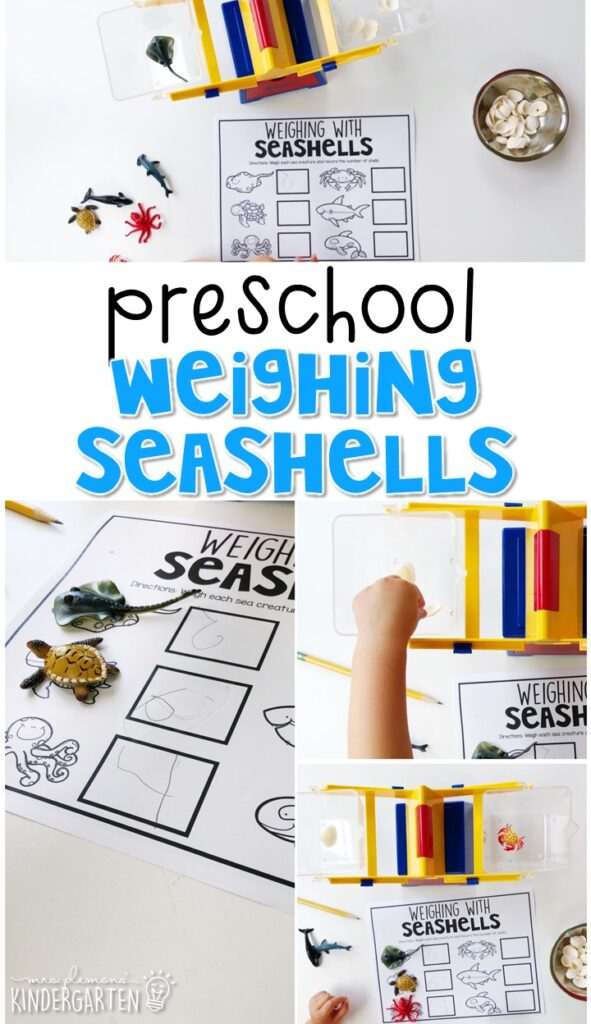 Explore a balance scale with this weighing seashell activity. Perfect for an ocean theme in tot school, preschool, or even kindergarten!
