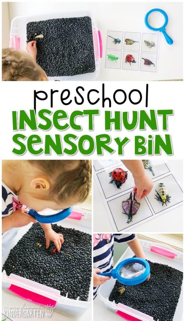 We LOVE this insect hunt and match sensory bin. Perfect for exploration with an insect theme in tot school, preschool, or even kindergarten!