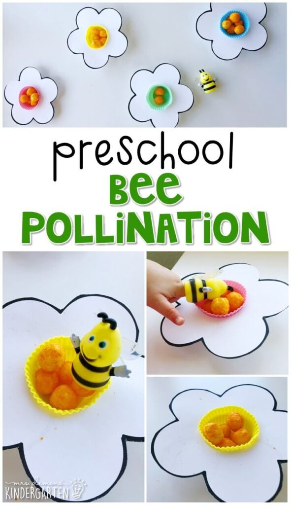 This bee pollination activity was a fun hands on way to show how bees transfer pollen from flower to flower. Great for an insect theme in tot school, preschool, or even kindergarten!