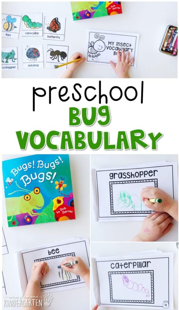 Practice bug vocabulary with these vocabulary cards and matching vocabulary book. Great for an insect theme in tot school, preschool, or even kindergarten!