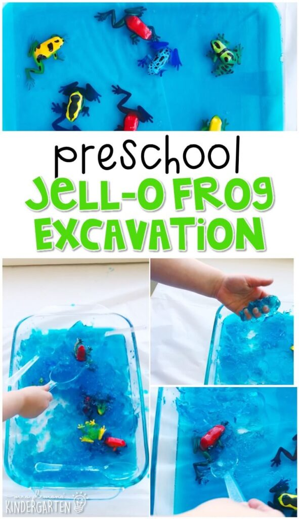 We LOVE this jello pond frog excavation sensory bin. Perfect for exploration with a frog theme in tot school, preschool, or even kindergarten!