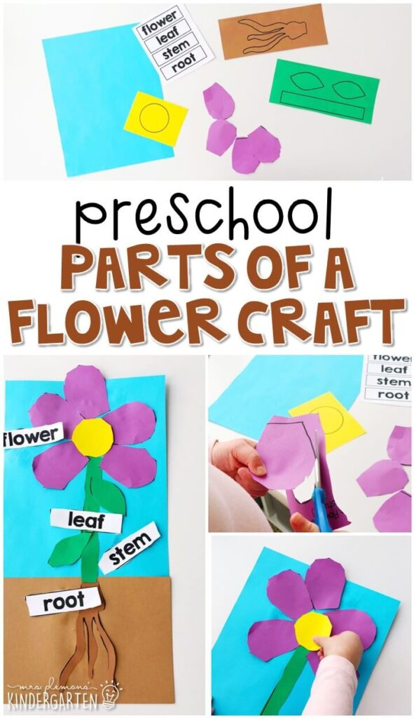 This parts of a flower craft was a fun way to show our learning with lots of fine motor practice. Great for a plant theme in tot school, preschool, or even kindergarten!