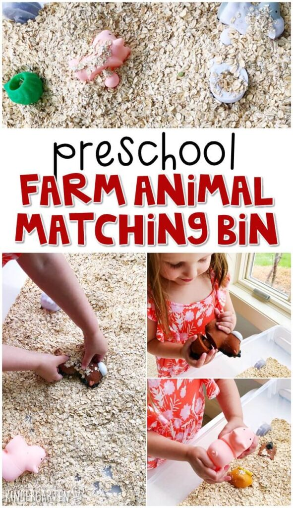 We LOVED the farm animal matching sensory bin. Perfect for exploration with a farm theme in tot school, preschool, or even kindergarten!