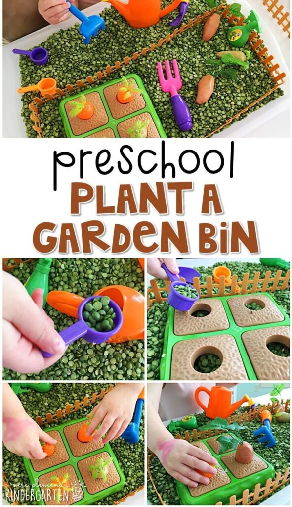 We LOVE this plant a garden sensory bin. Perfect for exploration with a plant theme in tot school, preschool, or even kindergarten!