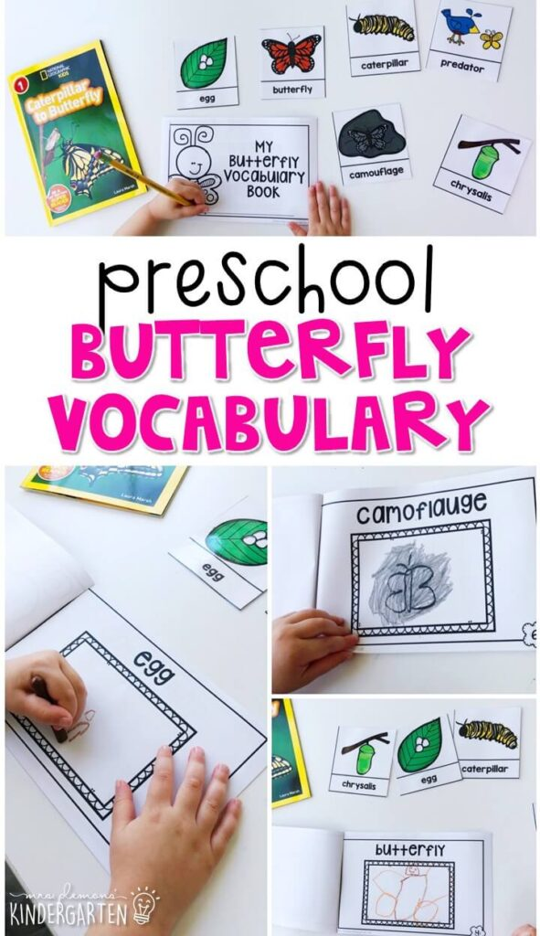 Practice butterfly vocabulary by illustrating your own book and using word reference cards. Great for spring in tot school, preschool, or even kindergarten!