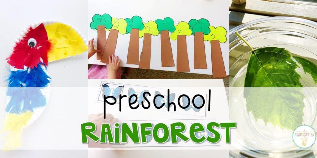 Preschool: Rainforest - Mrs. Plemons' Kindergarten
