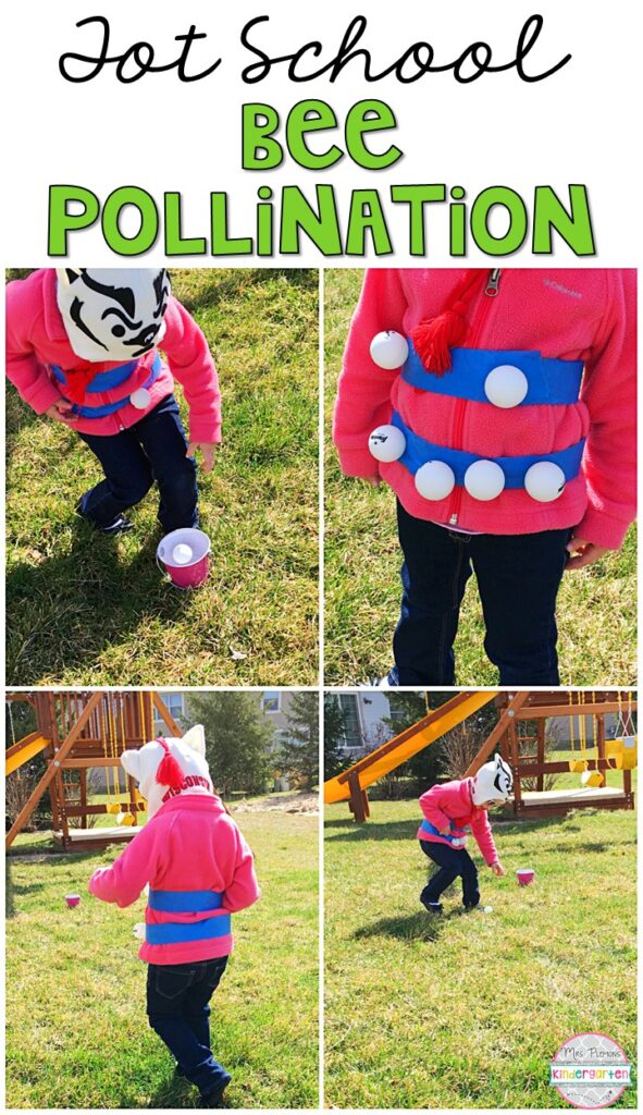 Learning is more fun when it involves movement! Learn about pollination and demonstrate how it works with this bee polination gross motor activity. Great for an insect theme in tot school, preschool, or even kindergarten!