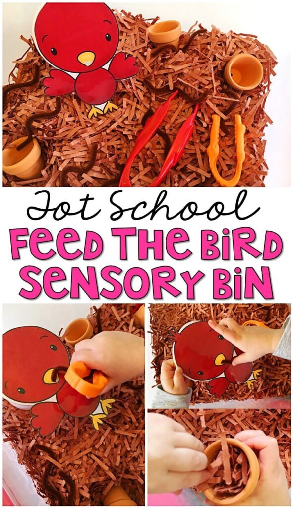 We LOVE this feed the bird sensory bin. Great for sensory play and fine motor practice with a spring theme in tot school, preschool, or even kindergarten!