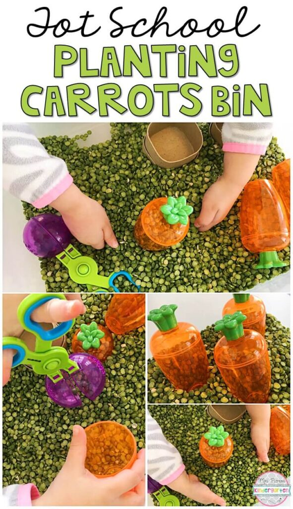 We LOVE this planting carrots sensory bin. So many fun items to use for scooping, pretending, and exploring! Great for a plant theme in tot school, preschool, or even kindergarten!
