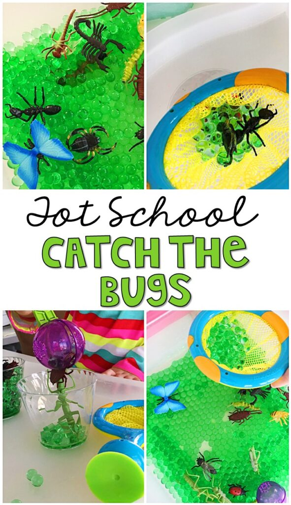 We LOVE this catch the bug sensory bin. So much fun to pretend, play, and explore. Great for tot school, preschool, or even kindergarten!