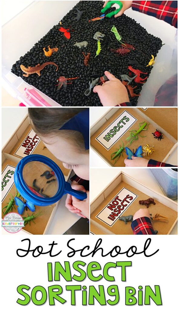 We had so much fun learning about insects and sorting by color with this sort the color bugs sensory bin. Great for an insect theme in tot school, preschool, or even kindergarten!