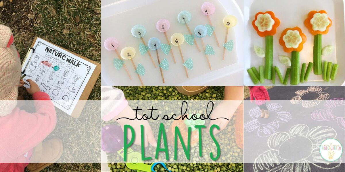 Tons of plant themed activities and ideas. Weekly plan includes books, literacy, math, science, art, sensory bins, and more! Perfect for tot school, preschool, or kindergarten.