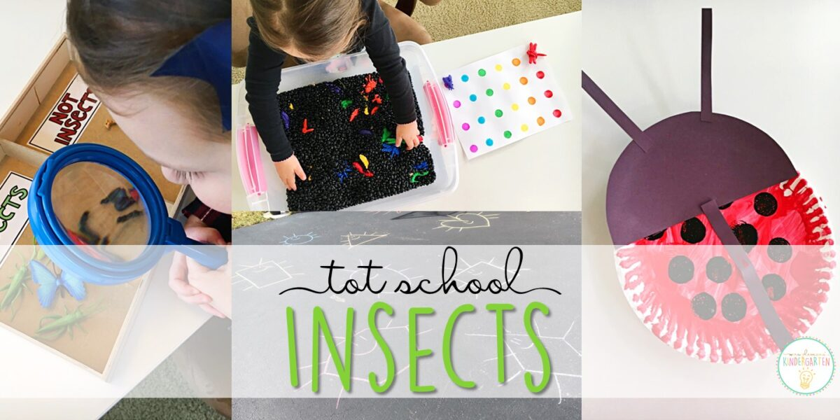 Tons of insect themed activities and ideas. Weekly plan includes books, literacy, math, science, art, sensory bins, and more! Perfect for tot school, preschool, or kindergarten.