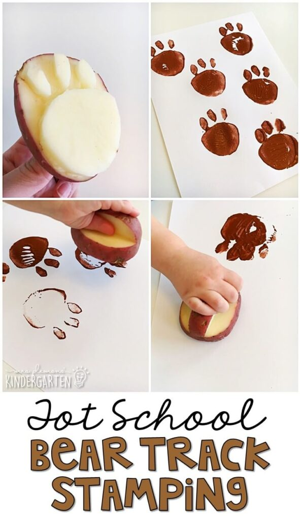 We LOVE bear track potato stamp activity for fine motor practice with a bear theme. Great for tot school, preschool, or even kindergarten!