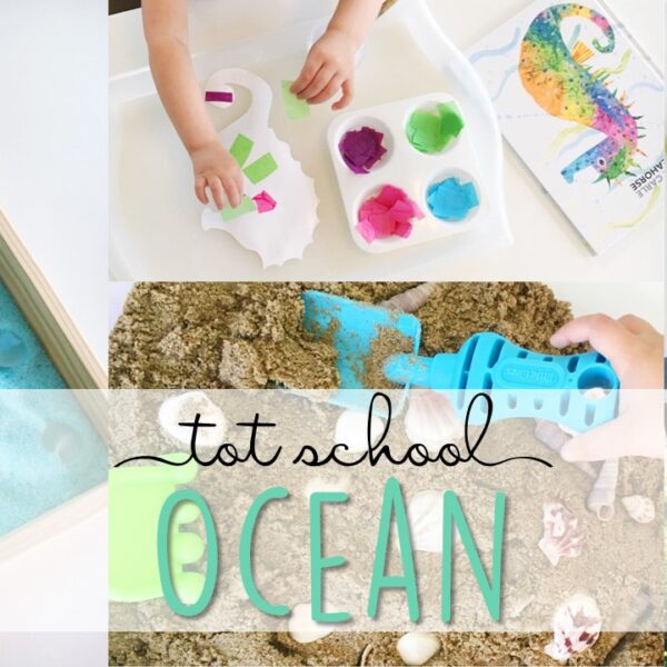 Tons of ocean themed activities and ideas. Weekly plan includes books, literacy, math, science, art, sensory bins, and more! Perfect for tot school, preschool, or kindergarten.