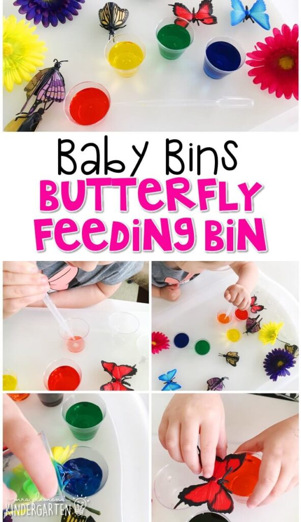 This butterfly feeding sensory bin is great for exploring science concepts with a butterfly theme and is completely baby safe. These Baby Bin plans are perfect for learning with little ones between 12-24 months old.